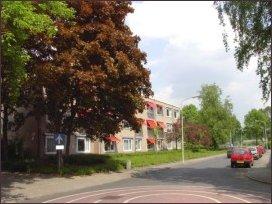 Reinaldstraat met Oosterwolde vanaf de Boonakker (h2327)